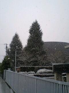 kitayama_snowing